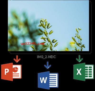 将HEIC格式图片插入MS Office中