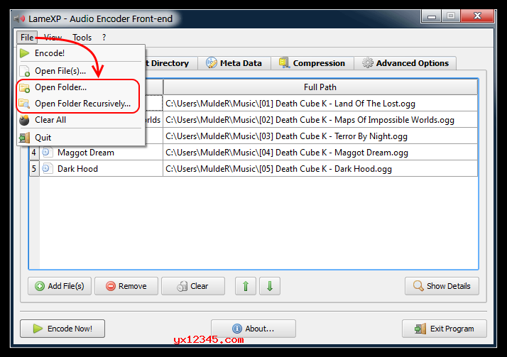 这款软件支持批量处理功能,所以您可以直接添加整个目录