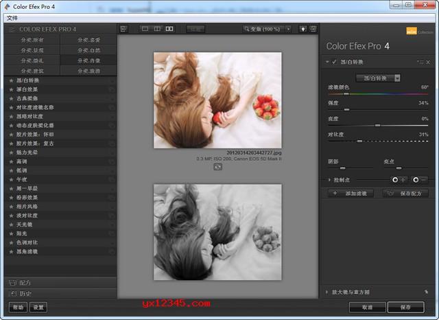 Nik Collection中文破解版_PS滤镜插件套装内含七款PS插件