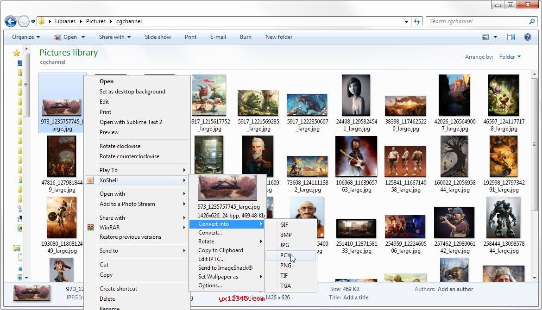 XnView Shell Extension右键看图插件 V4.1中文版