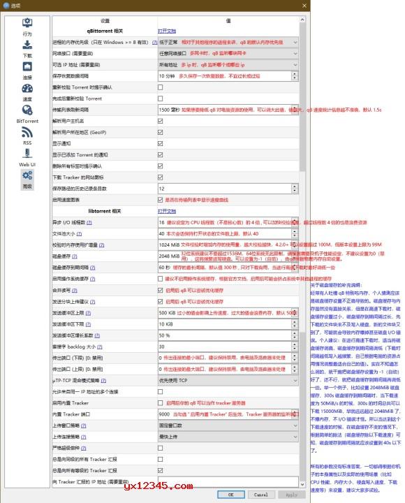 qBittorrent参数设置图解8