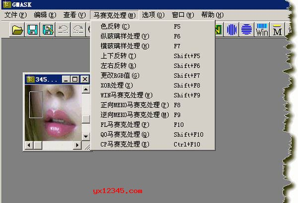 GMask软件自带的马赛克处理工具截图
