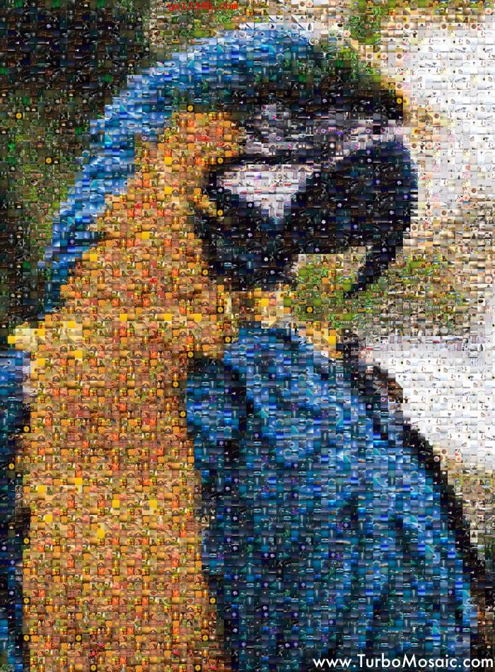 一只鸟的照片马赛克